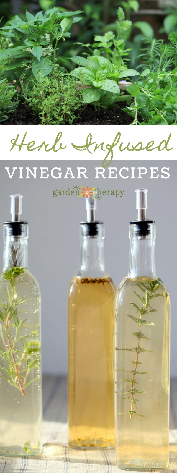How to Make Fresh Herb Infused Vinegars