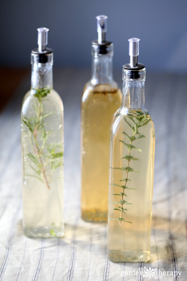 Infused Herb Vinegar Recipes