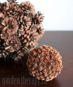 Small and large diy pine cone orbs garden therapy for Small pine cone crafts