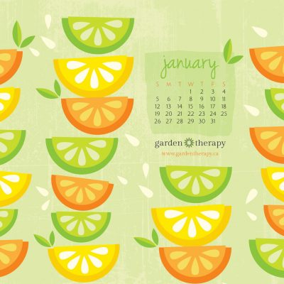 Free Desktop Calendar Wallpaper: Citrus Celebration!