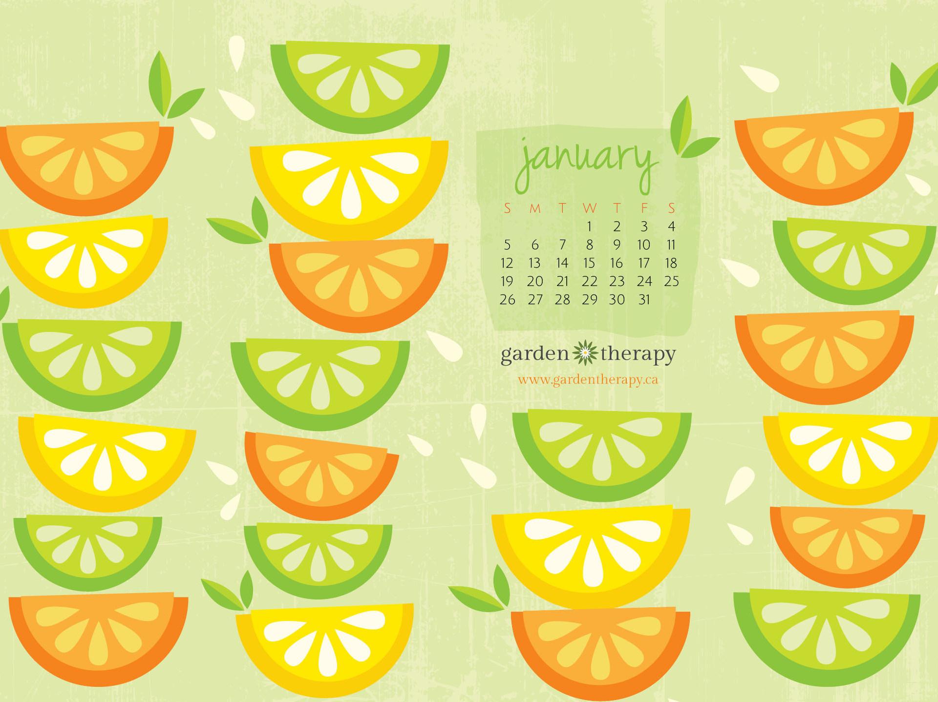 Garden Therapy Desktop Calendar January 2014 1024x768