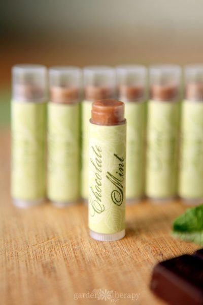 Chocolate Mint Lip Balm Recipe