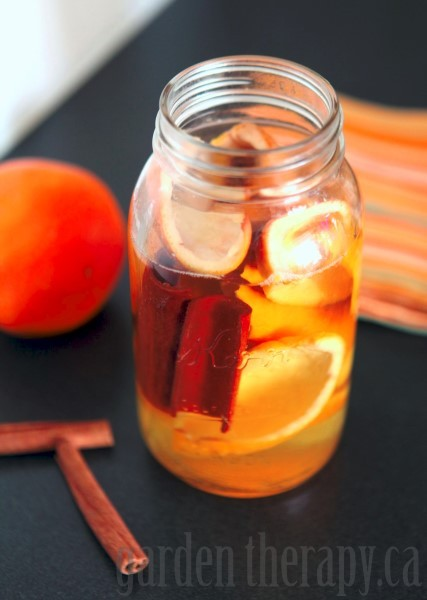 Orange Cinnamon Cleaner recipe and many more mason jar crafts
