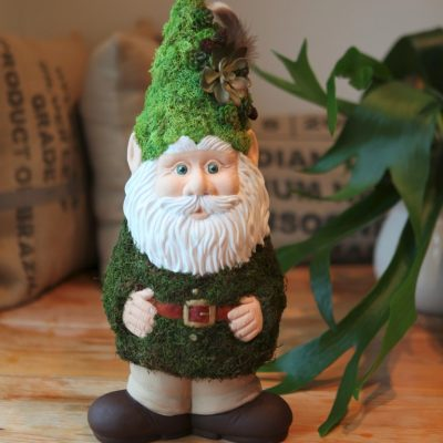 Oh Gnome! A Mossy DIY