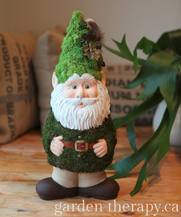 BC Home And Garden Shows Better Gnomes And Gardens Feature Garden Therapy Submission Woody