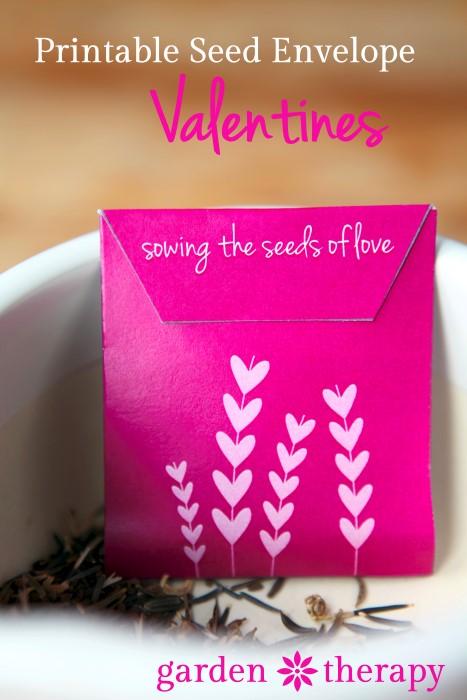 Free Printable Seed Envelope Valentines