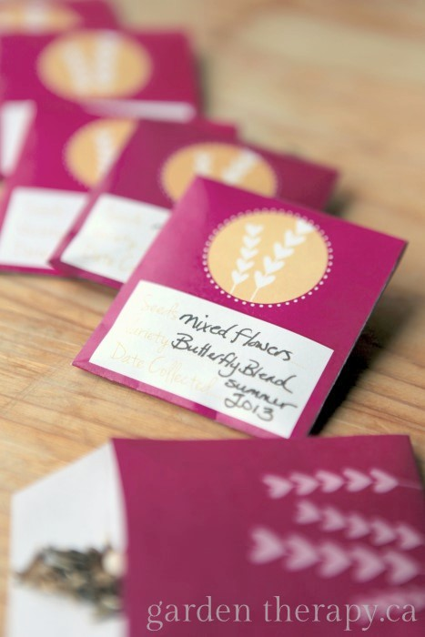 Free Printable Seed Envelopes for Valentines Day