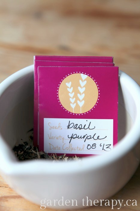 Free Printable Seed Packet Valentines Craft
