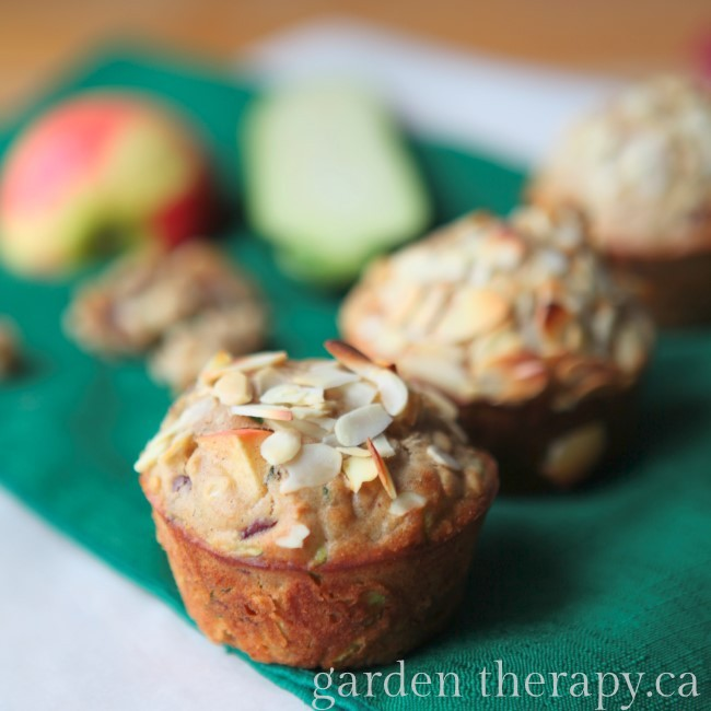 Garden Muffins (Zucchini Apple Cranberry Walnut Almond Oatmeal) Yum