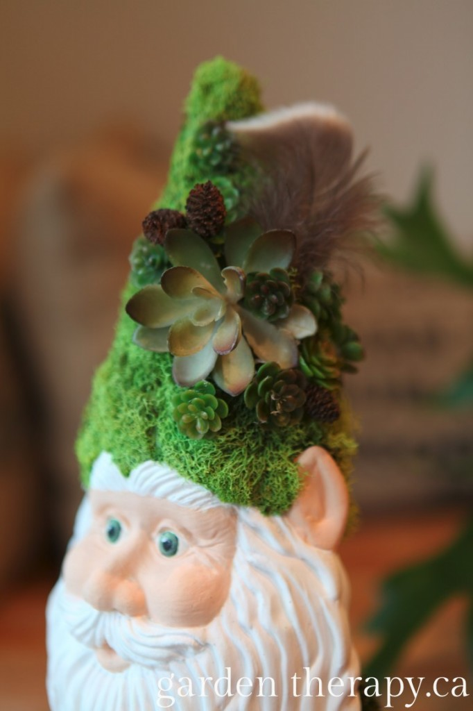 Gnome Hat with Lichen, pine cones, succculents and an owl feather