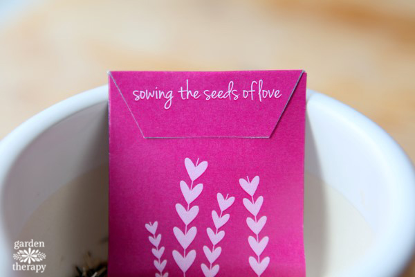Free Printable Valentines Seed Envelopes / Seed Packets