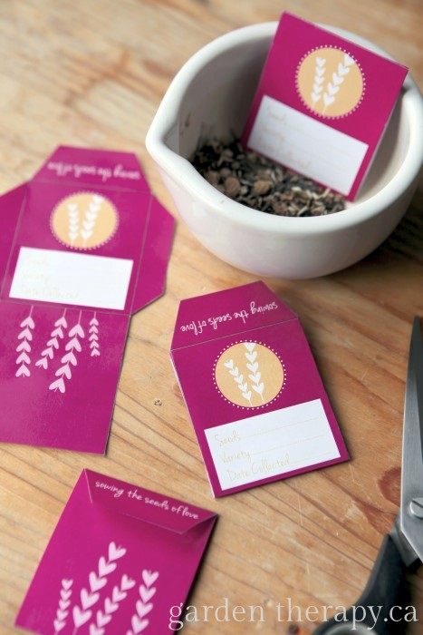 Valentines Seed Envelope Craft Project