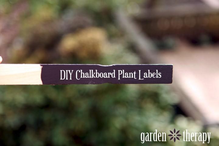DIY Chalkboard Paint Plant Markers