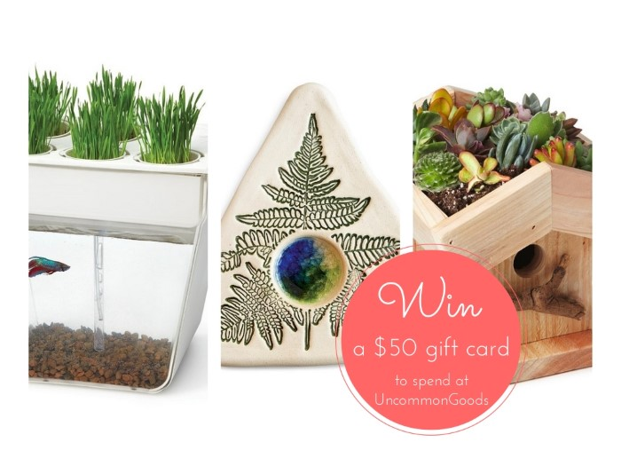 Enter to WIN an Uncommon Goods $50 Gift Card