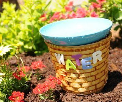 Gardening with Kids: Easy DIY Birdbath