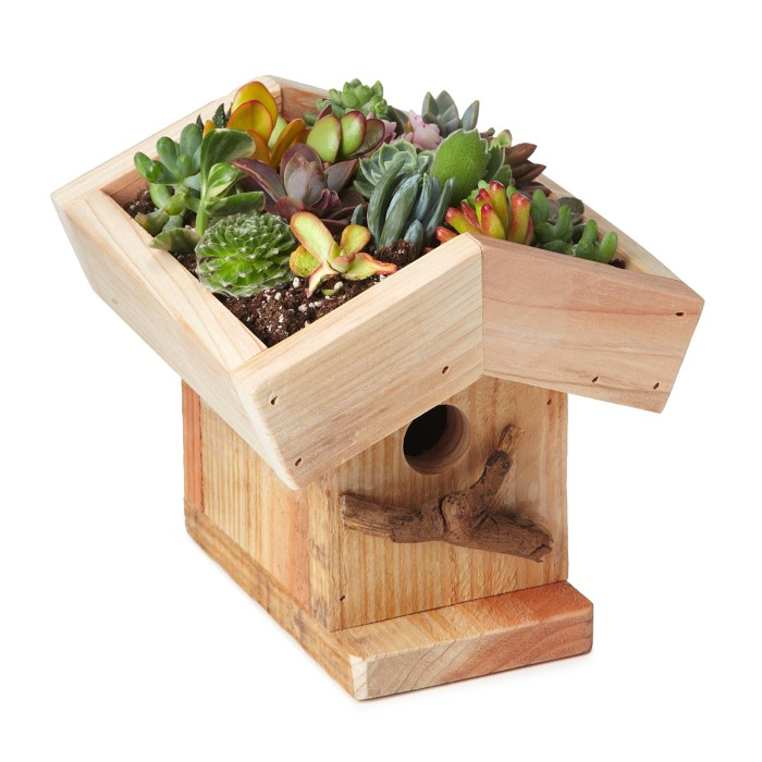 Green Roof Birdhouse found at UncommonGoods