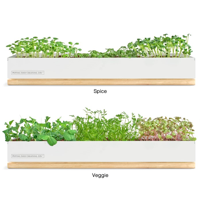 Microgreens Grow Boxes found at UncommonGoods