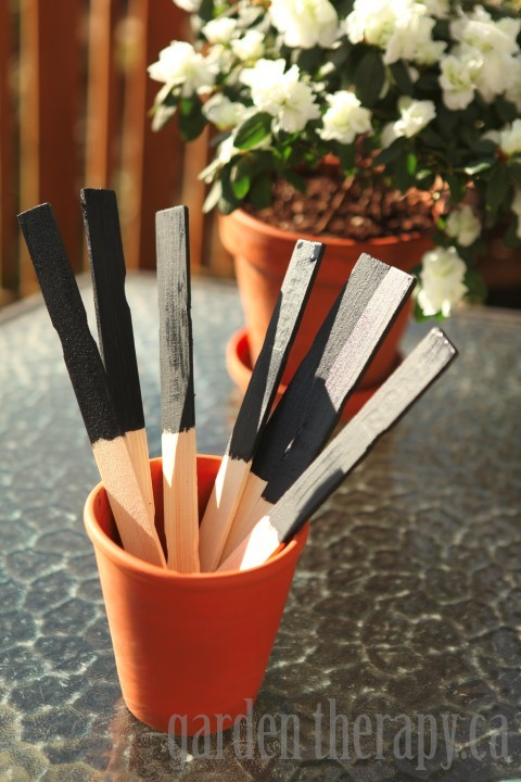 Plant Tags from Chalk Board Paint and Paint Sticks