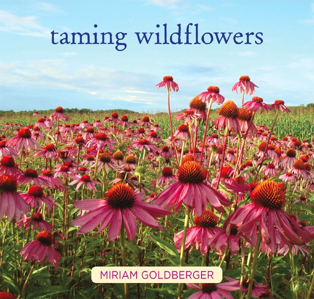 Taming Wildflowers by Miriam Goldberger