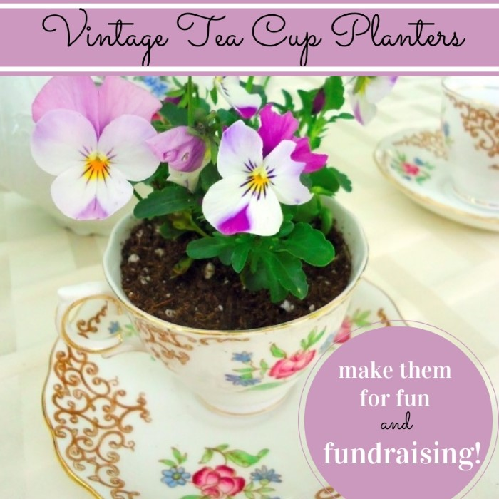 Vintage Tea Cup Planters - Make them for fun or fundraising!