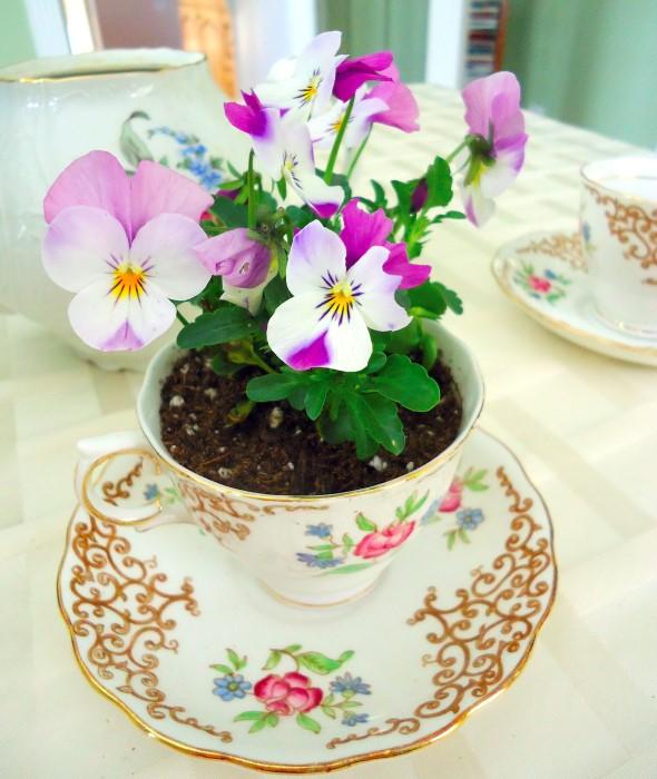 Vintage Tea Cup Planters for Wedding