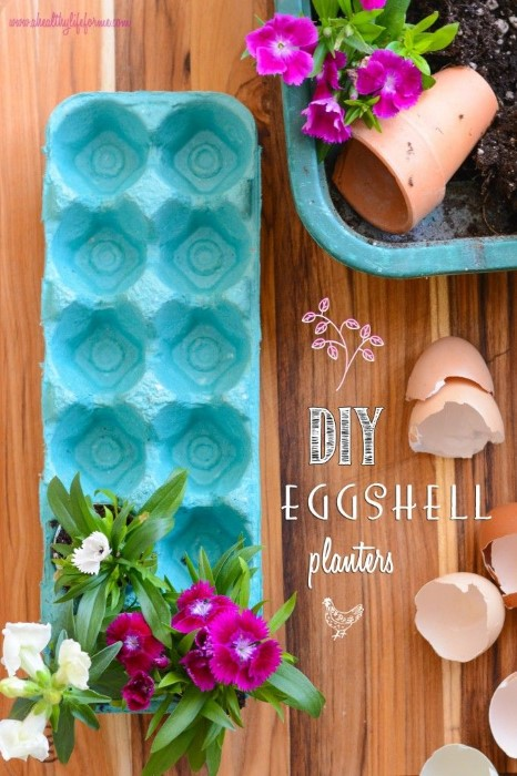 DIY Eggshell Planters #EarthDayProjects #DIY #Craft #Easter #Spring