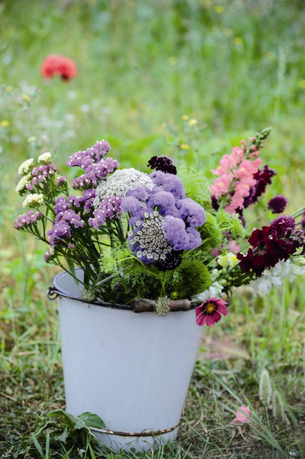 harvesting cut flowers in a bucket