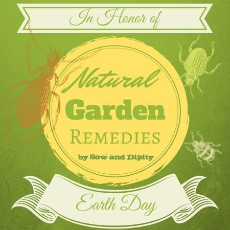 Natural Garden Remedies for Earth Day Sow and Dipity