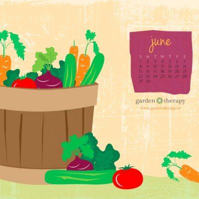 Summer Summer Summertime! June's Calendar is Here!