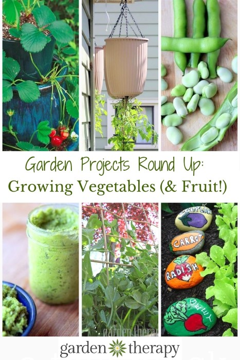 Great Garden Projects Round Up for Growing Vegetables and Fruit from Garden Therapy