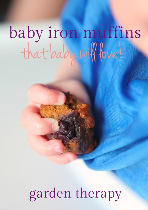 Iron Muffin recipe that your baby will love