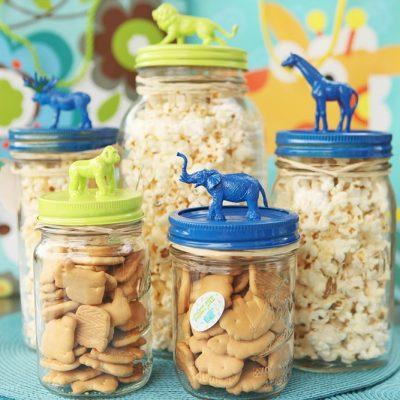 20+ Mason Jar Crafts and Gardening in Jars