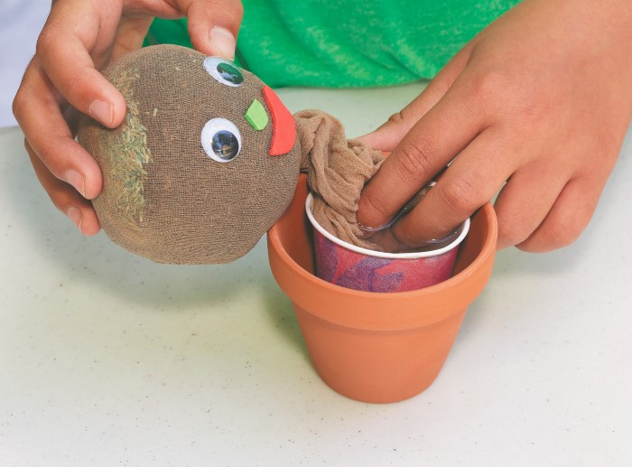 Step 5 of making grassy garden gnomes with kids