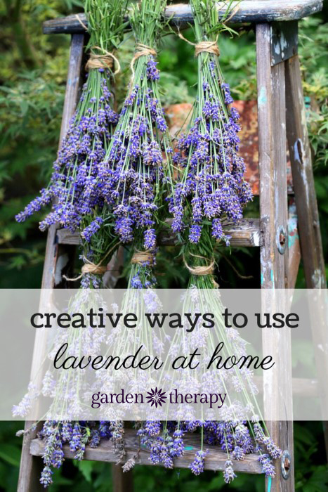 Creative recipes for using lavender like dryer bags, body butter, bath salts, linen spray and even lavender lemonade