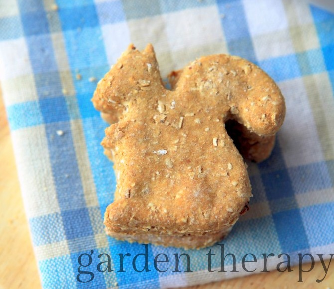 Homemade Dog Cookie Recipe with oatmeal and cinnamon