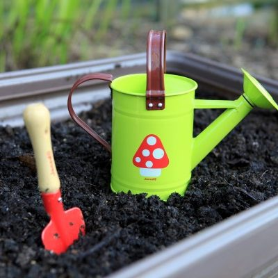 Top 7 Tips for Getting Kids into the Garden