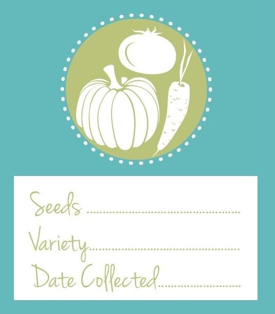Free Prinatble Vegeatble Seed Envelope