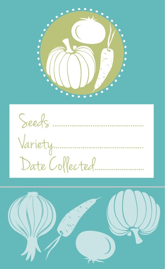 Free Printable Vegeatble Seed Packet