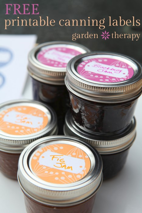 Free Printable Canning Labels for jams and preserves - cute berry design in 3 colors