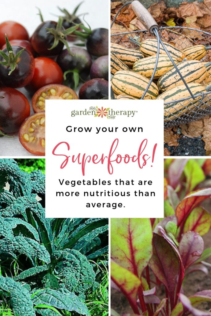 Grow Your Own Superfoods!