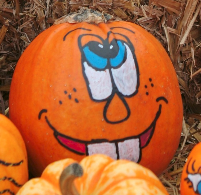 Pumpkin Face Painting Pictures Images