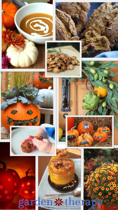 Some of the Pumpkin Projects on Garden Therapy