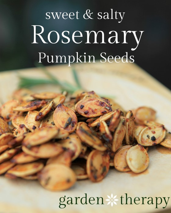 Sweet and Salty Roasted Rosemary Pumpkin Seeds