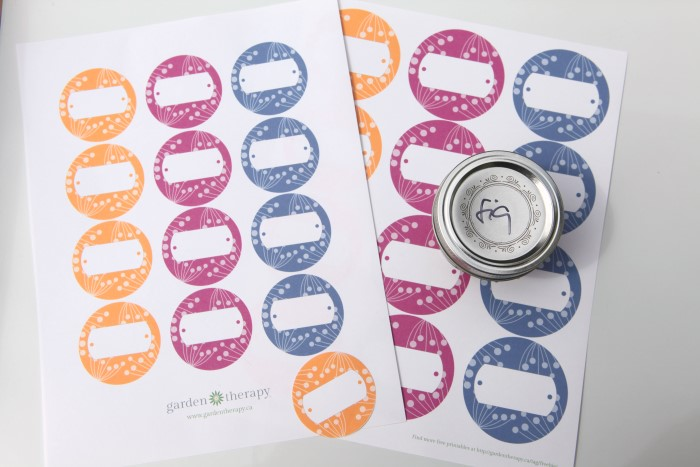 download and print these free canning labels for berry jams - so cute!