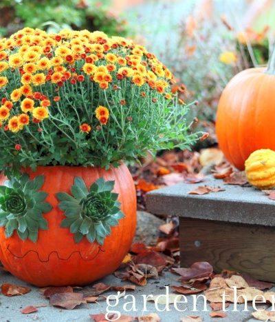 Groovy Pumpkin Planter