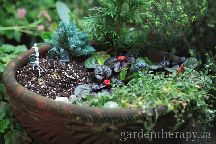 Halloween Mini Garden: a closer look