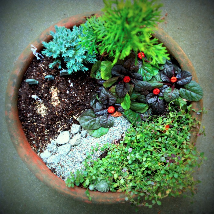 Halloween Mini Garden