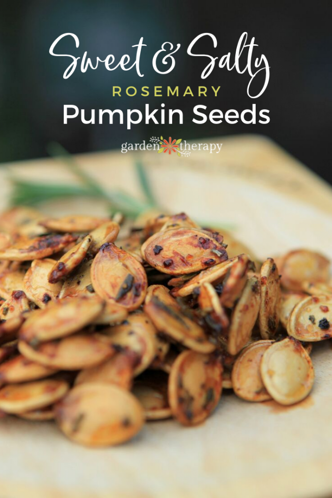 Sweet & Salty Rosemary Pumpkin Seeds Recipe