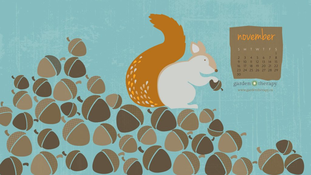 Garden Therapy Squirrelly Desktop Calendar for November