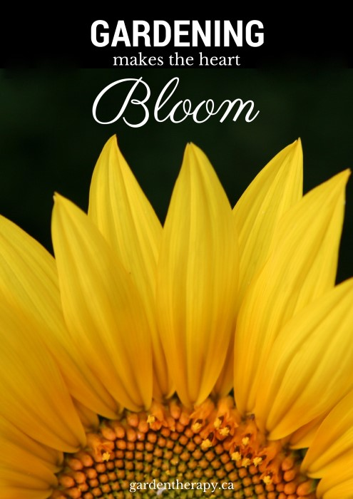 Gardening makes the heart bloom - Best of gardentherapy.ca